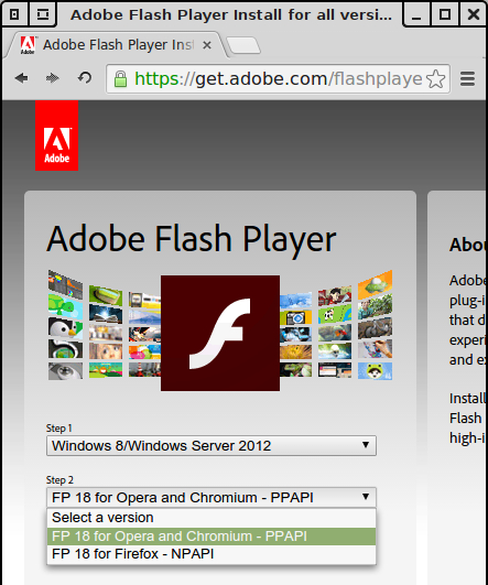adobe_flash_security_issue_05